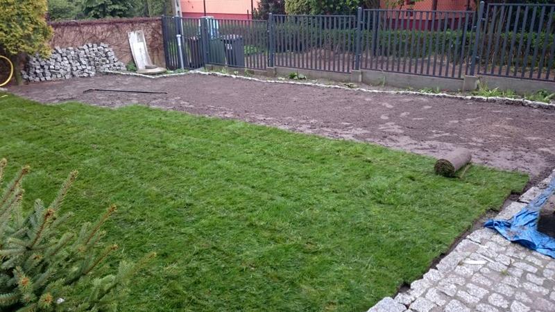 Položenie kobercového trávnika - Limbach